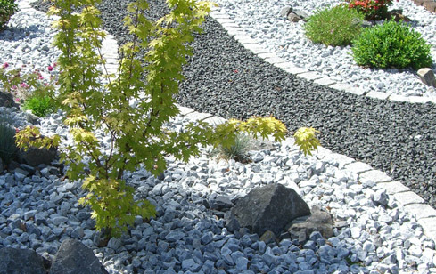 beitragsbilder-pflanzen-kiesvorgarten