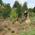 Bepflanzung der Beete