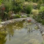 Der fertige Teich